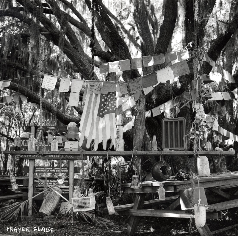 black and white image of oak tree hung with prayer flags