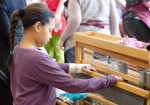 young girl at the loom