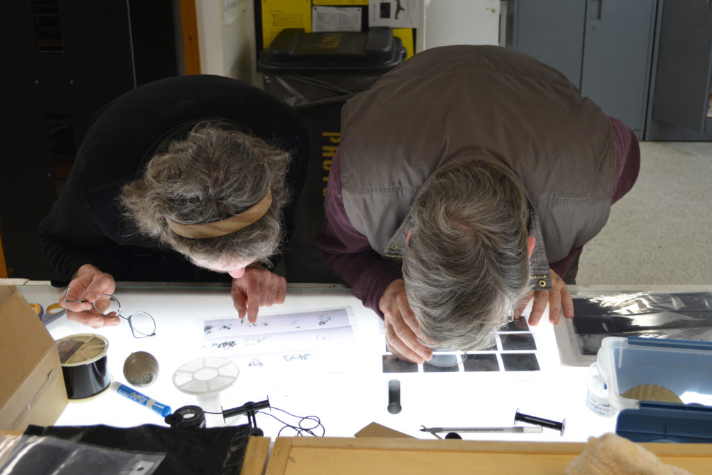 Taking a closer look at negatives during a 1-week workshop