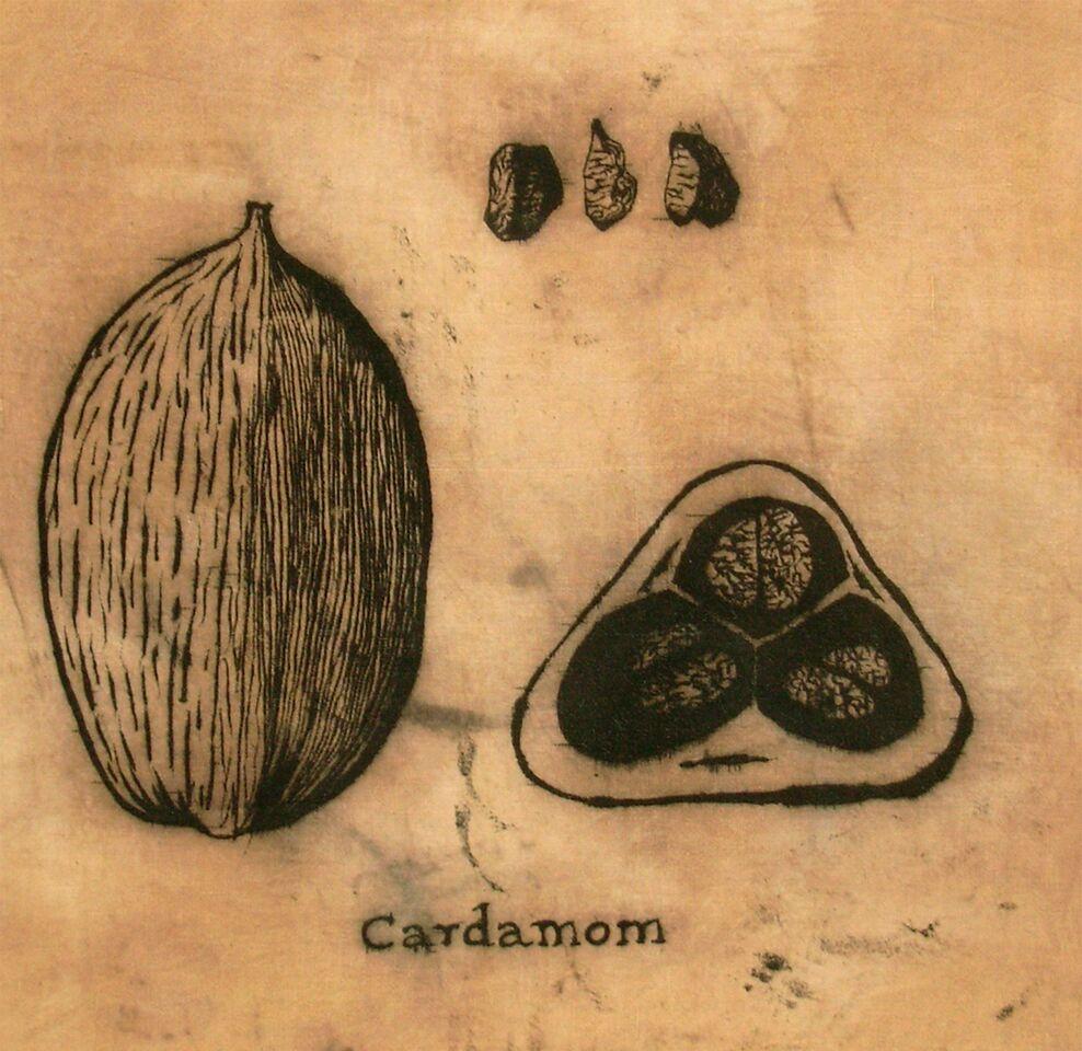 kalamkari design of a cardamom pod