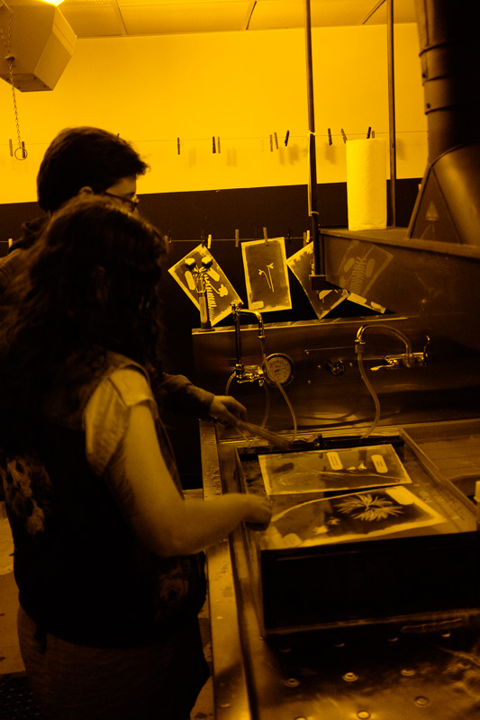 Washing photograms in the darkroom