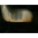 Colville3_DarkHoursHorizon40 thumbnail