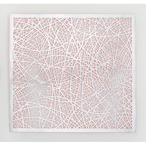 suggs_reticulating lines