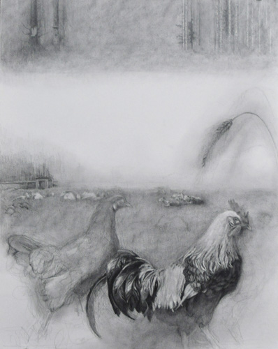 black and white image of a hen and rooster