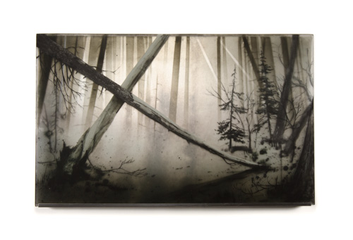 greyscale glass panel with a pine forest scene