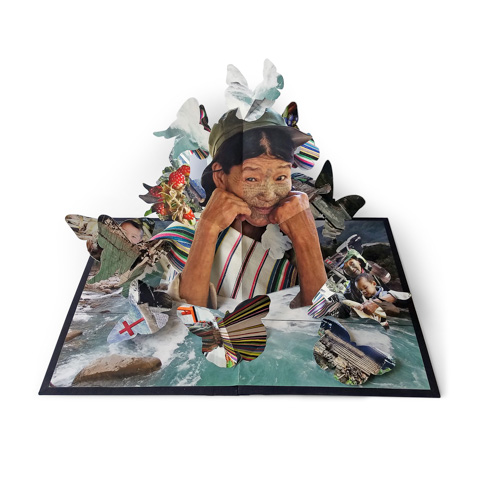 Pop-up book spread by Colette Fu