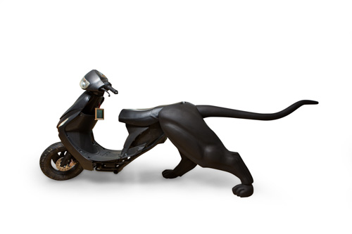 black moped front with a large cat's legs and tail in back