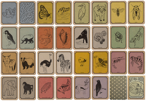 Anne Covell, Natural Order: A Game of Pairs,