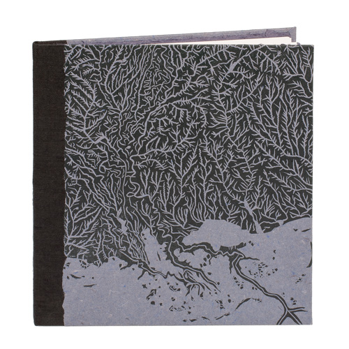 artist book by Frank Hamrick